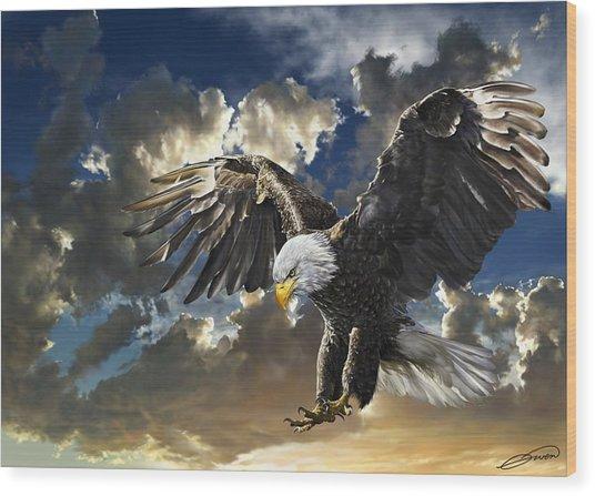Bald Eagle Haliaeetus Leucocephalus Wood Print by Owen Bell