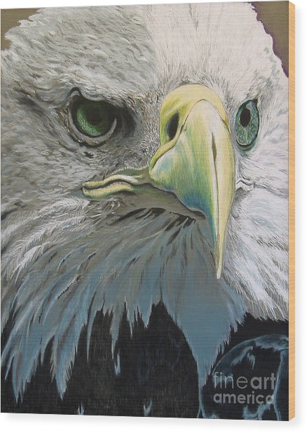 Sold Bald Eagle Wood Print