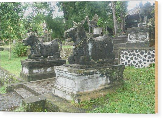 Bali Bulls Wood Print by Jack Edson Adams