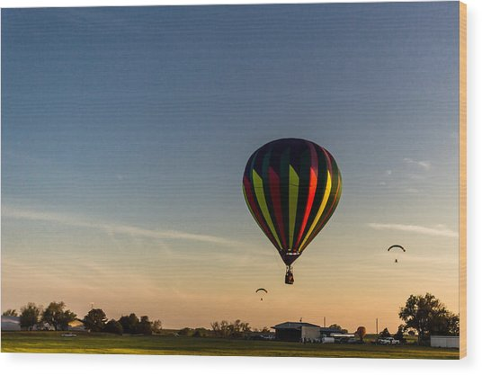 Balloon 8 Wood Print