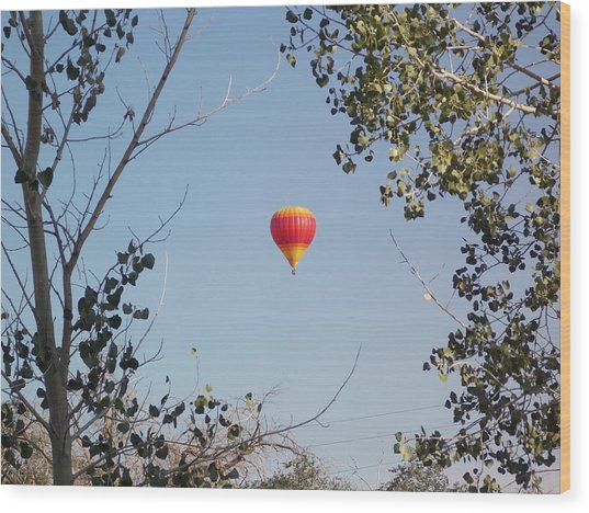 Balloon Candy Wood Print