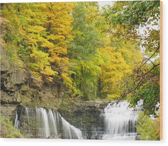 Balls Falls In Autumn Color Wood Print