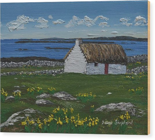 Ballyconneelly Cottage Connemara Ireland Wood Print