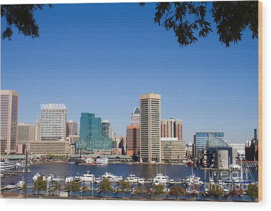 Baltimore Harbor Skyline Wood Print