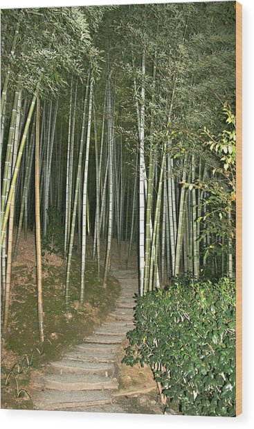 Bamboo Forest Pathway Wood Print