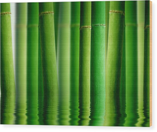 Bamboo Forest With Water Reflection Wood Print
