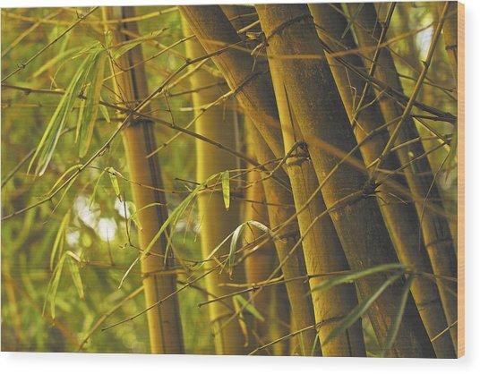 Bamboo Gold Wood Print