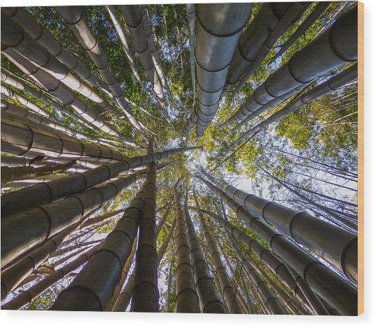 Bamboo Jungle Wood Print