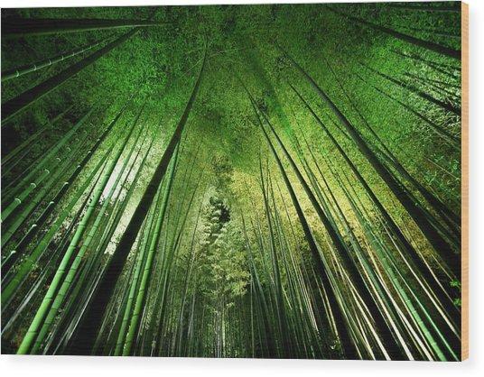 Bamboo Night Wood Print