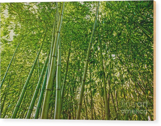 Bamboo Wood Print by Nur Roy