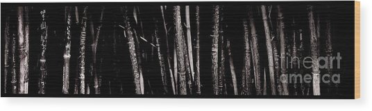 Bamboo Wood Print by Ron Smith