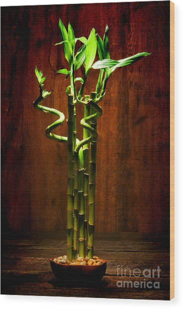 Bambooesque  Wood Print