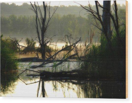 Banner Marsh Spring Wood Print