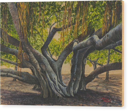 Banyan Tree Maui Wood Print