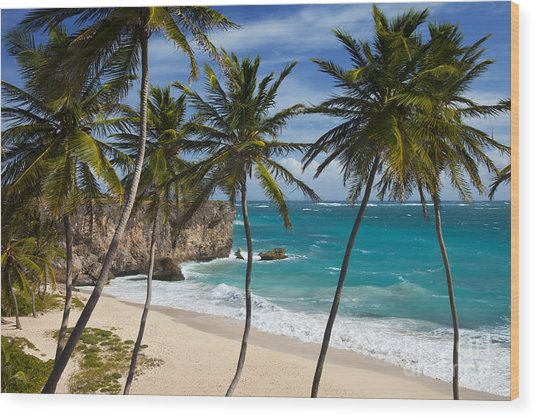 Wood Print featuring the photograph Barbados Beach by Brian Jannsen
