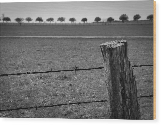 Barbed Horizon Wood Print