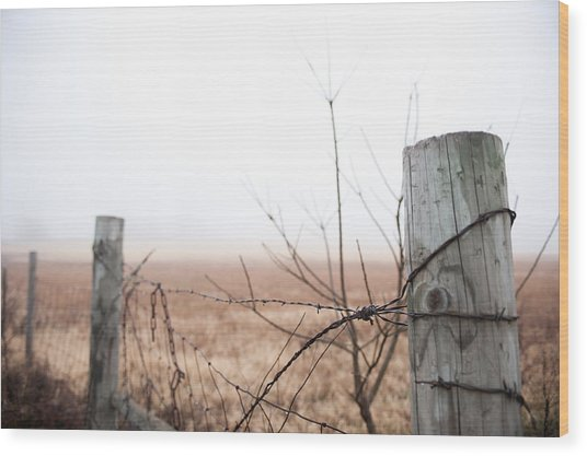 Barbed Wire Fence In The Fog Wood Print