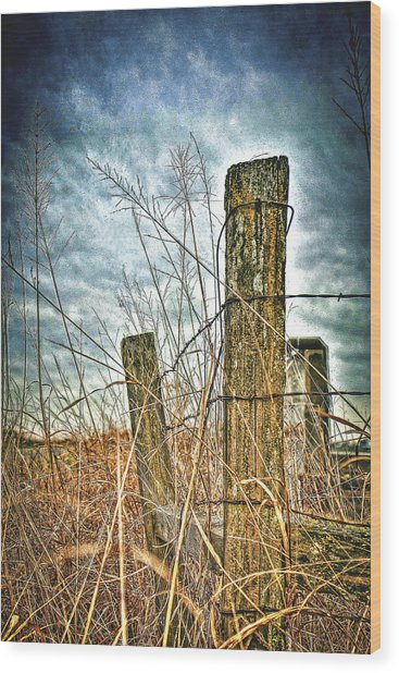 Barbwire Fences Wood Print