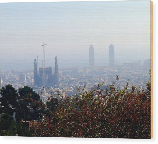 Barcelona Wood Print by Olga Breslav