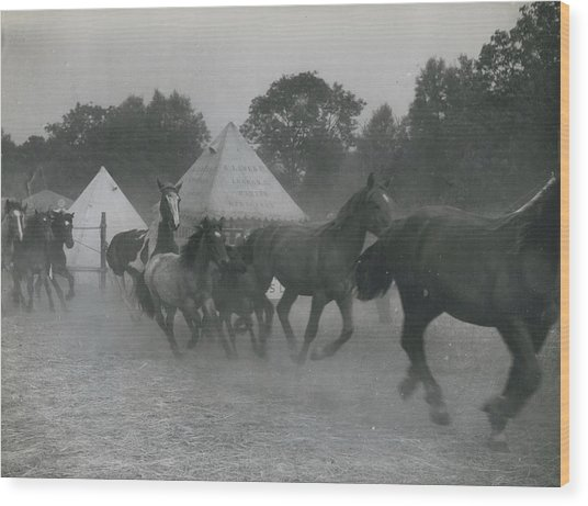 Baret�s 700 Years Old Cattle And Pleasure Fair Opens�� Wood Print by Retro Images Archive