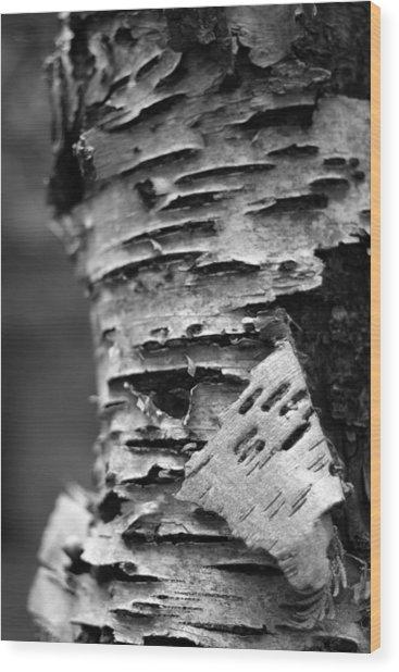 Bark Wood Print by Brady D Hebert