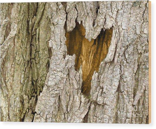 Bark Heart Wood Print