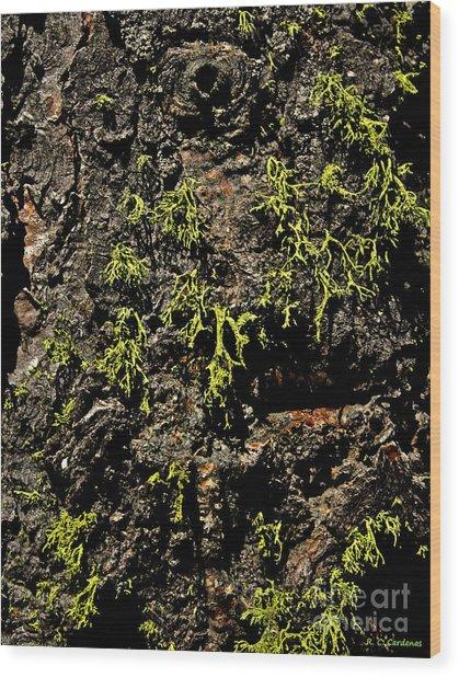 Bark Wood Print by Rebecca Christine Cardenas