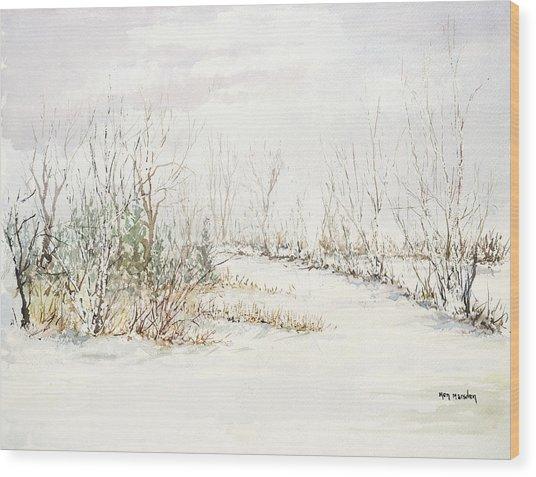Barkhausen Wood Print