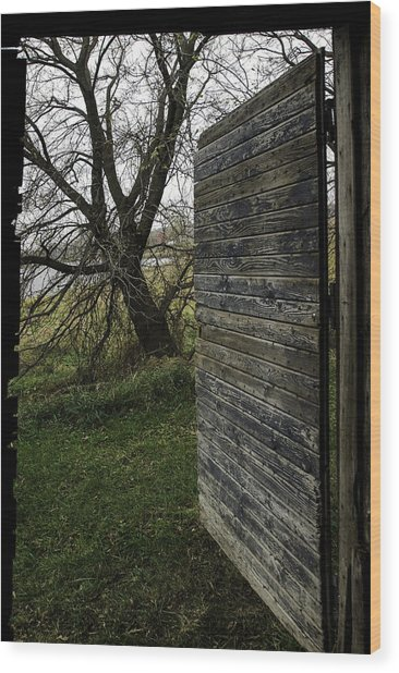 Barn Door No. 1 Wood Print