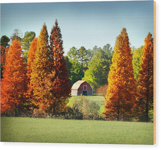 Barn In Fall Wood Print