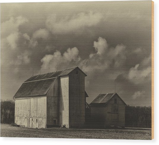Barn In Sepia Wood Print