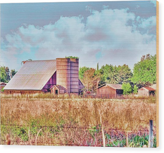 Barn On Interstate 5 Ef Wood Print