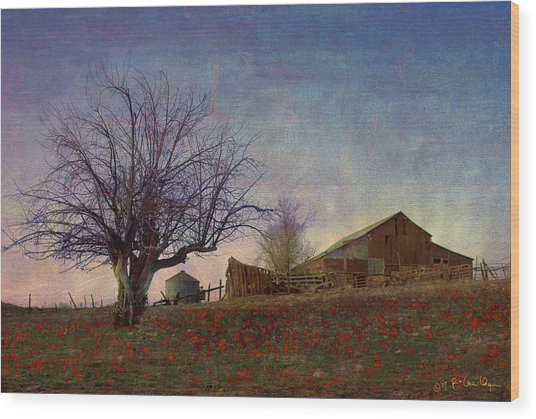 Barn On The Hill - Big Sky Wood Print by R christopher Vest