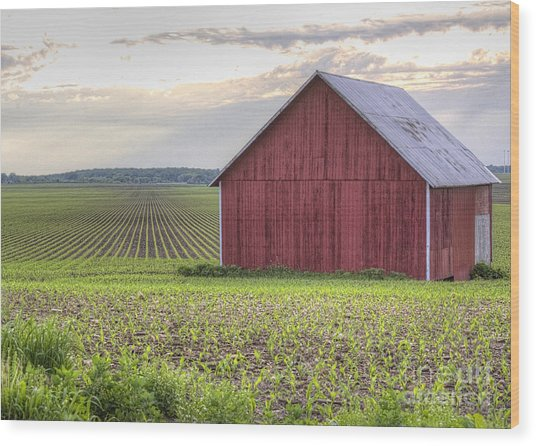 Barn Perspective Wood Print by Kent Taylor