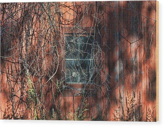 Barn Side Wood Print