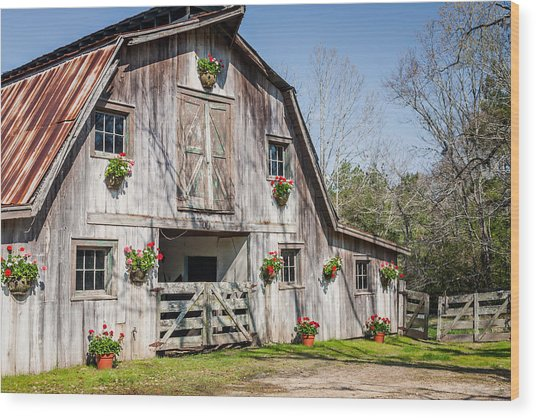 Barn With Flowers Wood Print by Terry Ellis