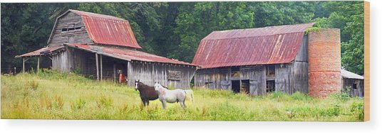 Barns And Horses Near Mills River Nc Wood Print