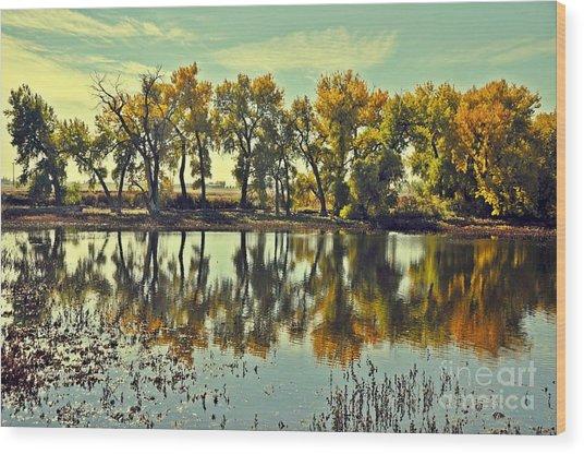 Barr Lake Reflection Wood Print by Reza Mahlouji