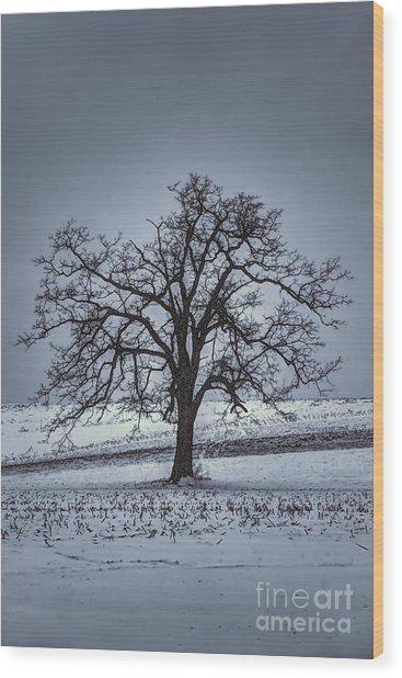 Barren Winter Scene With Tree Wood Print