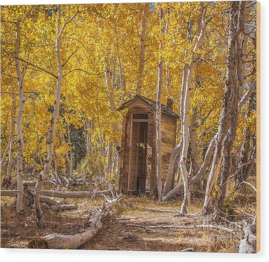 Bashful Wood Print