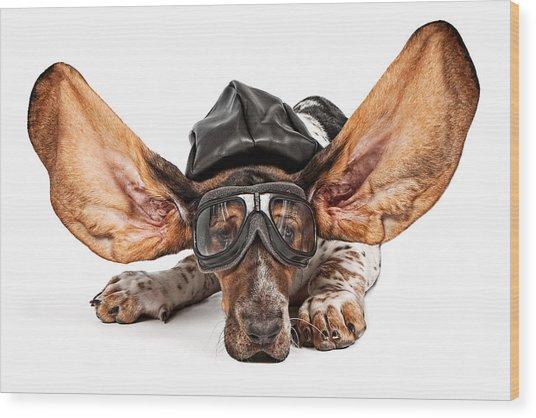 Basset Hound Dog Aviator Wood Print by Susan Schmitz