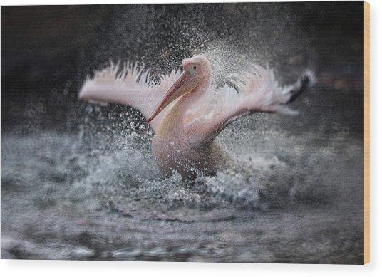 Bathing Fun ..... Wood Print