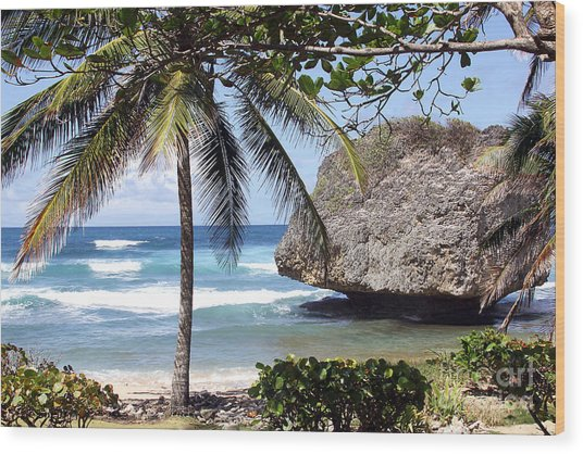 Bathsheba No11 Wood Print