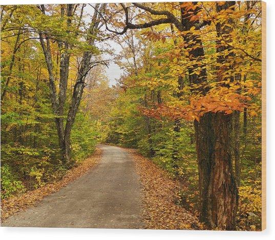 Baxter State Park 11 Wood Print