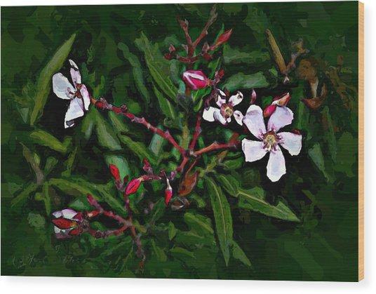 Bay Beauty Wood Print