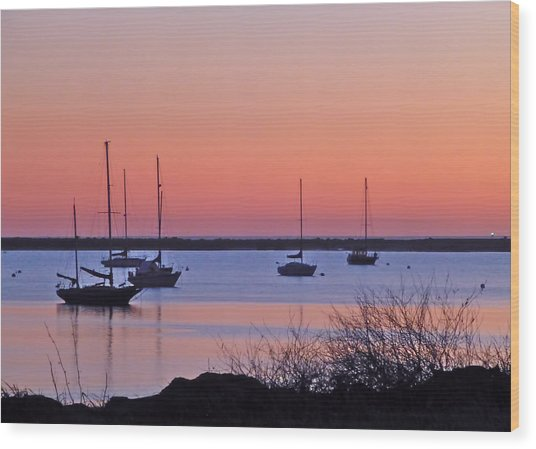 Bay Harbor Wood Print