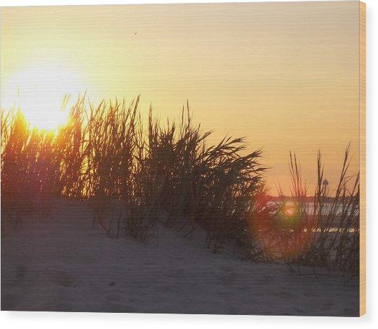 Beach #1 Wood Print