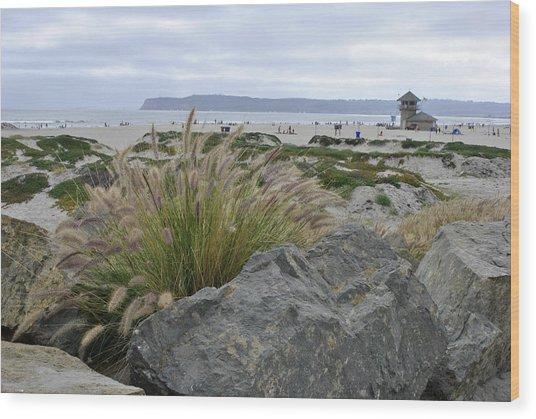 Beach At Coronado Island Wood Print by Misty Stach