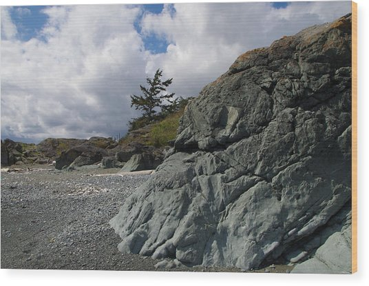 Beach At Fort Rodd Hill Wood Print