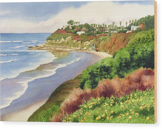 Beach At Swami's Encinitas Wood Print by Mary Helmreich